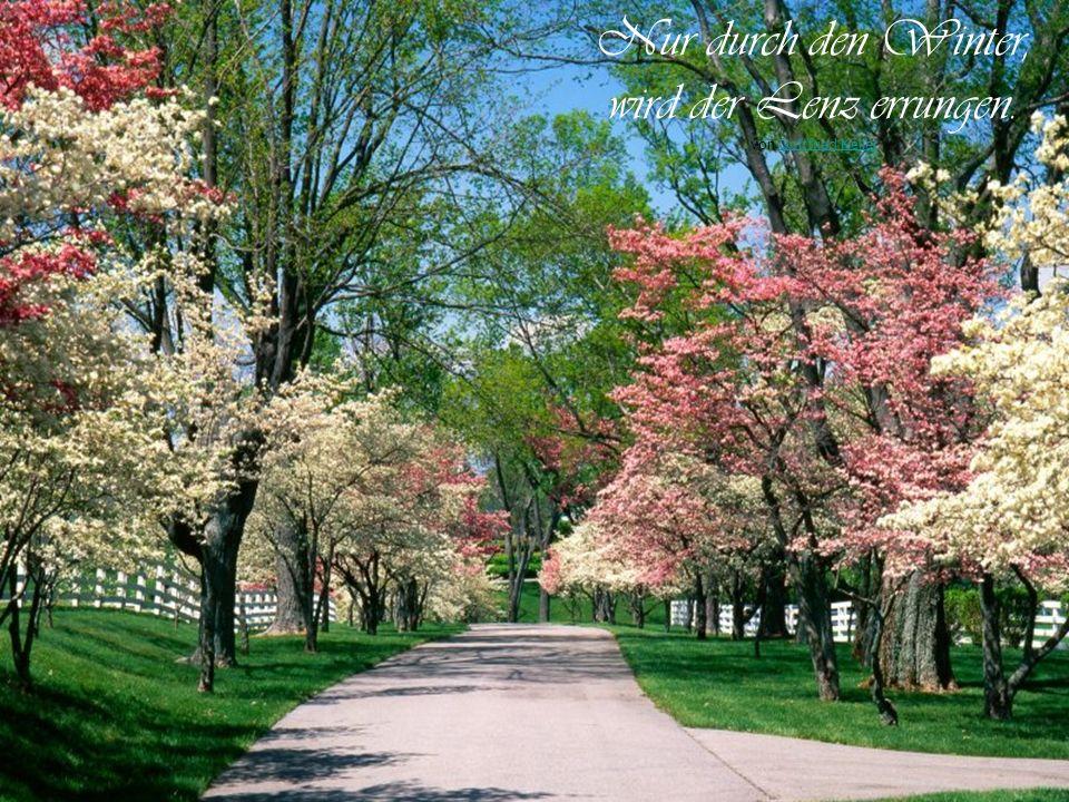 Das Schöne am Frühling ist, dass er immer gerade dann kommt, wenn man ihn braucht. von Jean PaulJean Paul