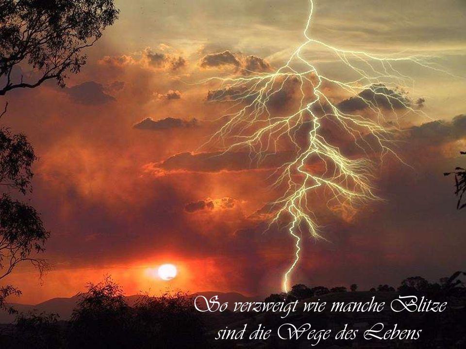 Donner ist gut und eindrucksvoll, aber die Arbeit leistet der Blitz. von Mark TwainMark Twain
