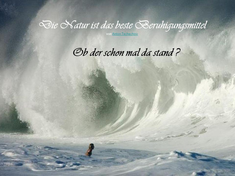 Der Ozean kennt keine völlige Ruhe - das gilt auch für den Ozean des Lebens. von Mahatma GandhiMahatma Gandhi