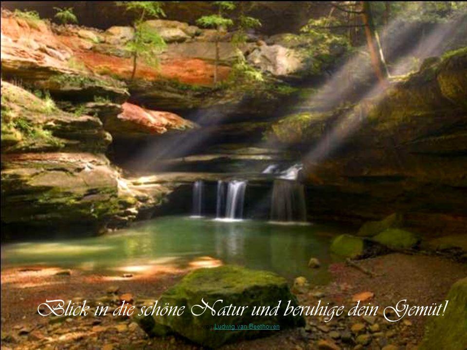 Die Natur ist das beste Beruhigungsmittel von Anton TschechowAnton Tschechow Ob der schon mal da stand ?