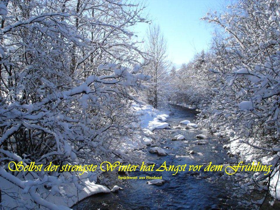 Der Herbst ist ein zweiter Frühling, wo jedes Blatt zur Blüte wird. von Albert CamusAlbert Camus
