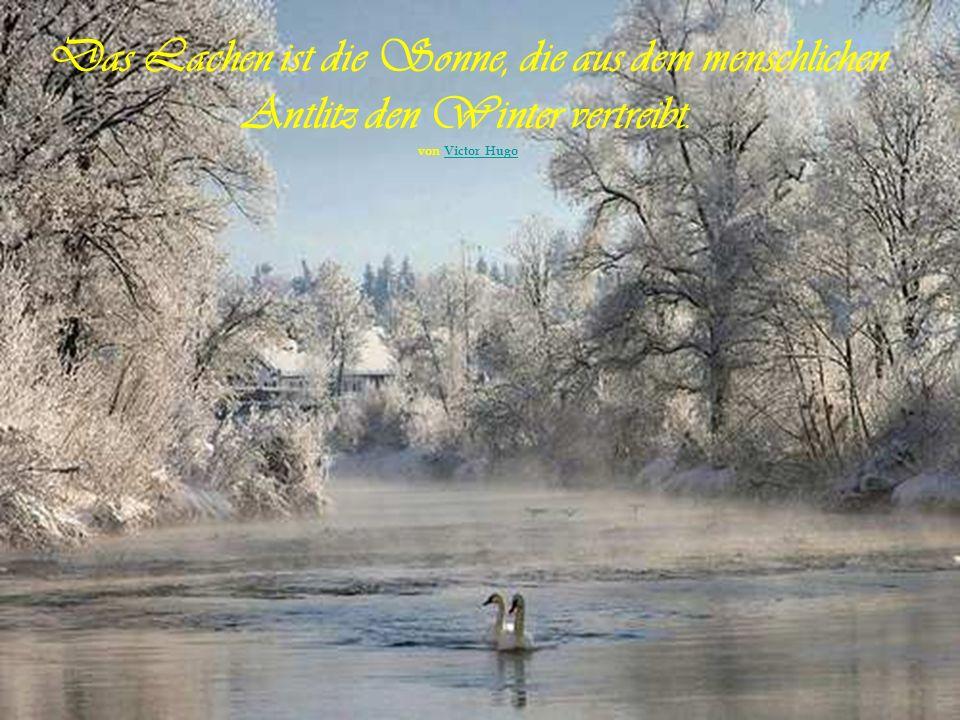 Selbst der strengste Winter hat Angst vor dem Frühling. Sprichwort aus Finnland