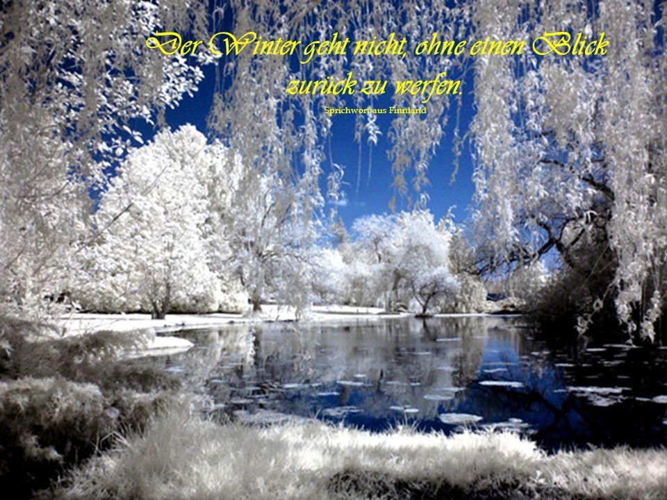 Das Lachen ist die Sonne, die aus dem menschlichen Antlitz den Winter vertreibt. von Victor HugoVictor Hugo