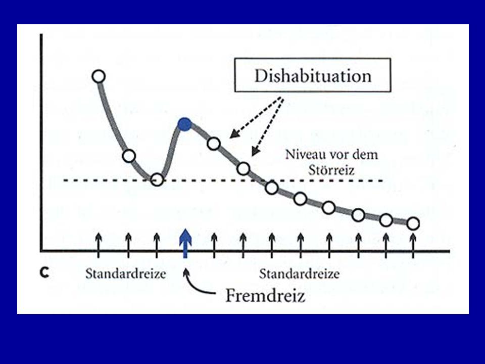 Sensitivierung Definition: Sensitivierung ist die allgemeine Zunahme der Reaktionsbereitschaft eines Organismus auf Reize, die z.B.