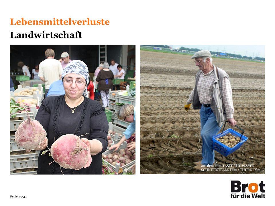 Seite 13/31 Lebensmittelverluste Landwirtschaft