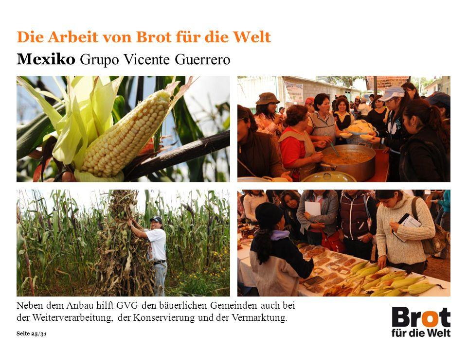 Seite 25/31 Die Arbeit von Brot für die Welt Mexiko Grupo Vicente Guerrero Neben dem Anbau hilft GVG den bäuerlichen Gemeinden auch bei der Weitervera