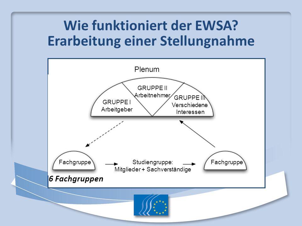 Wie funktioniert der EWSA? Erarbeitung einer Stellungnahme 6 Fachgruppen Plenum GRUPPE II Arbeitnehmer GRUPPE I Arbeitgeber GRUPPE III Verschiedene In