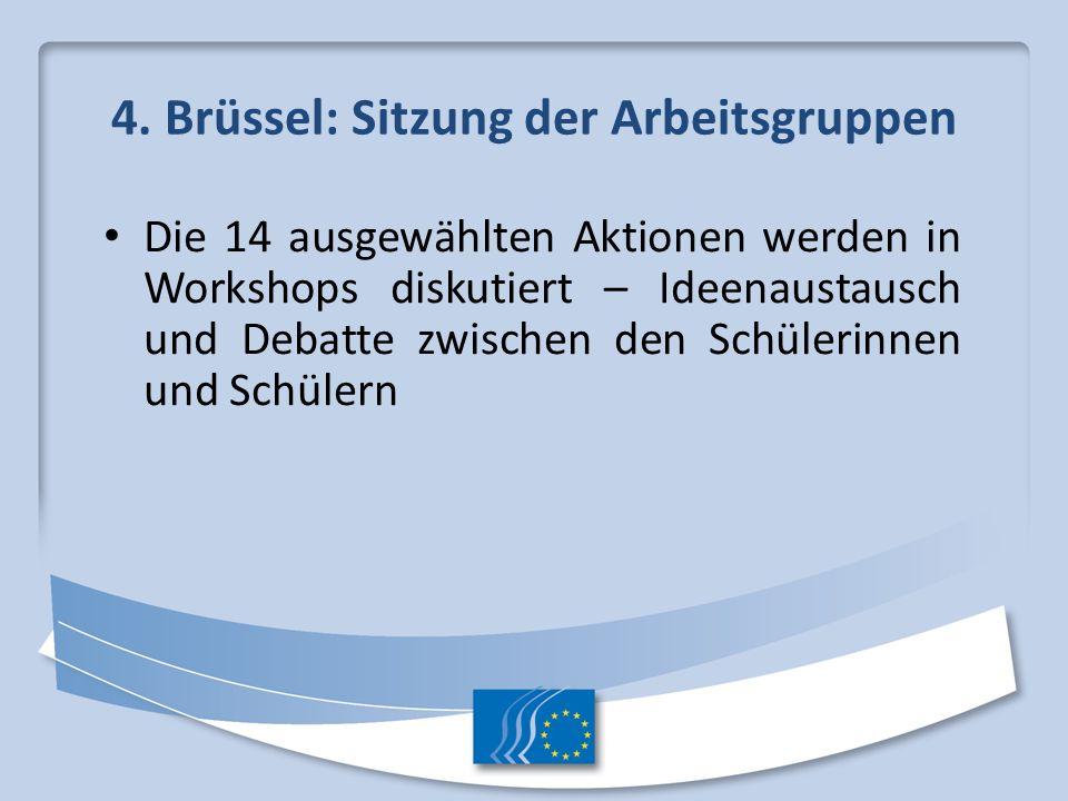 4. Brüssel: Sitzung der Arbeitsgruppen Die 14 ausgewählten Aktionen werden in Workshops diskutiert – Ideenaustausch und Debatte zwischen den Schülerin
