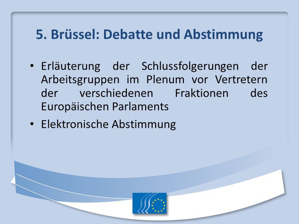 5. Brüssel: Debatte und Abstimmung Erläuterung der Schlussfolgerungen der Arbeitsgruppen im Plenum vor Vertretern der verschiedenen Fraktionen des Eur