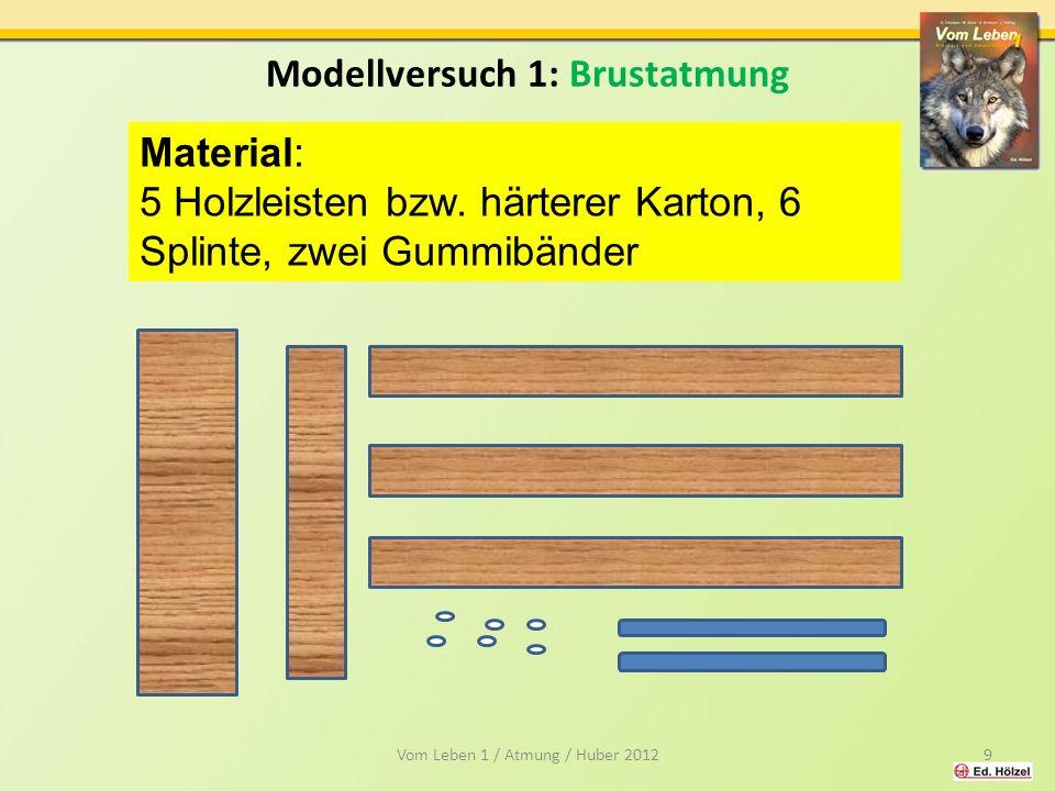 Modellversuch 1: Brustatmung Material: 5 Holzleisten bzw.