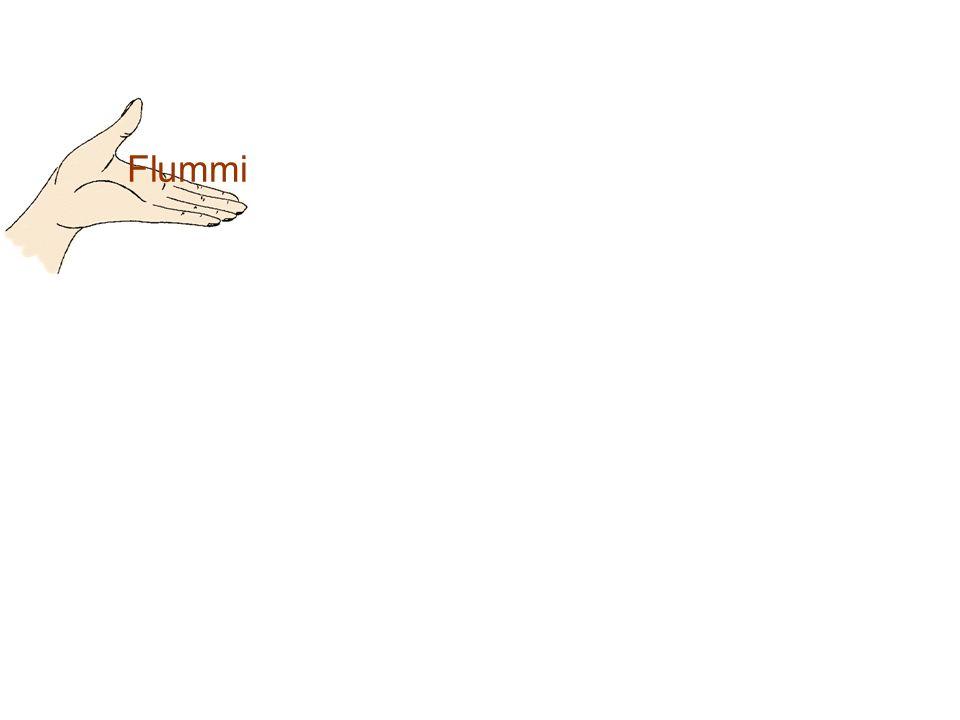 Flummi Daniel Brabetz 1A 2004/05