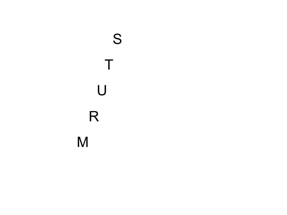S T U R M