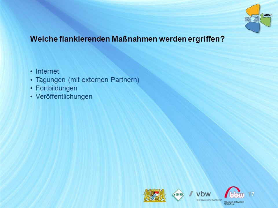 17 Internet Tagungen (mit externen Partnern) Fortbildungen Veröffentlichungen Welche flankierenden Maßnahmen werden ergriffen?
