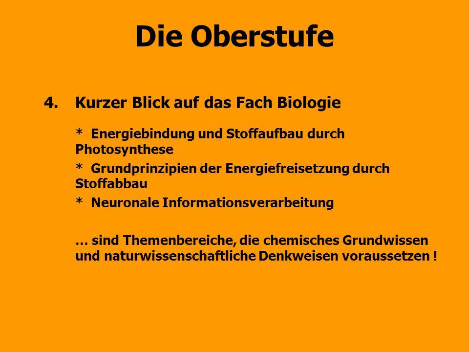 Die Oberstufe 4.Kurzer Blick auf das Fach Biologie *Energiebindung und Stoffaufbau durch Photosynthese *Grundprinzipien der Energiefreisetzung durch S