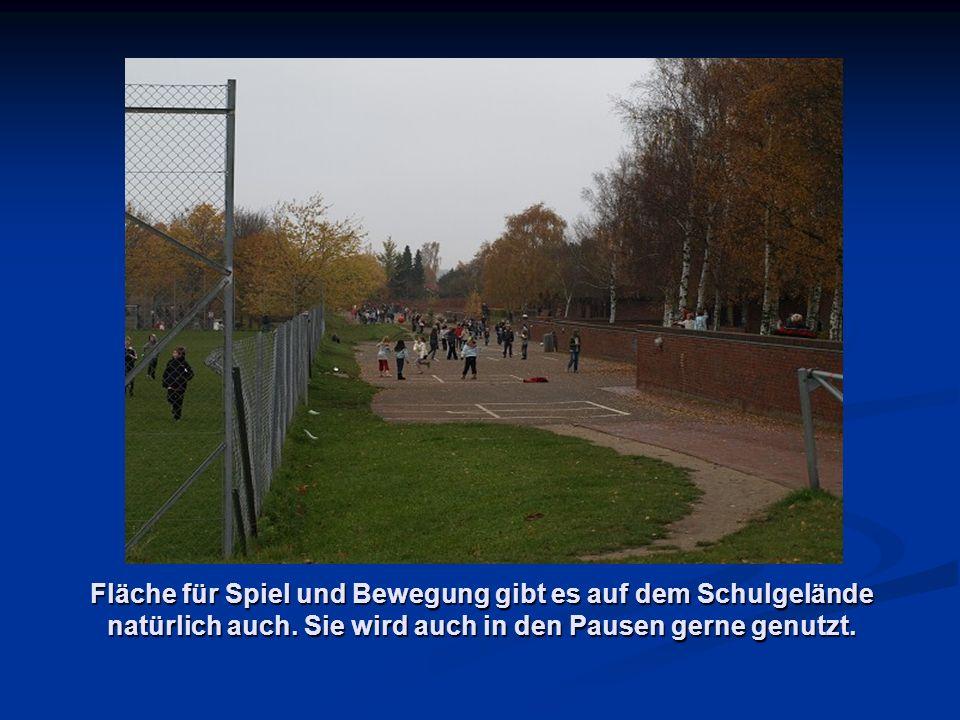 Fläche für Spiel und Bewegung gibt es auf dem Schulgelände natürlich auch.