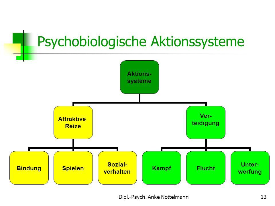 Dipl.-Psych. Anke Nottelmann13 Psychobiologische Aktionssysteme Aktions- systeme Attraktive Reize BindungSpielen Sozial- verhalten Ver- teidigung Kamp