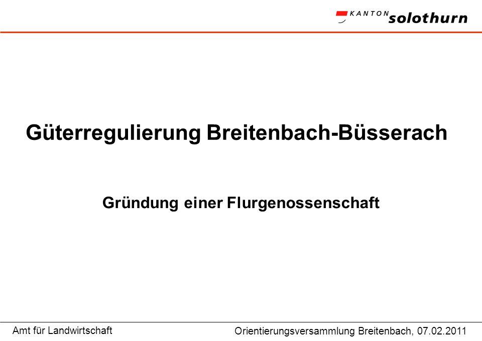 Amt für LandwirtschaftGP Niederamt, Vorstandsitzung 9.12.2009 Güterregulierung Breitenbach-Büsserach Gründung einer Flurgenossenschaft Orientierungsve