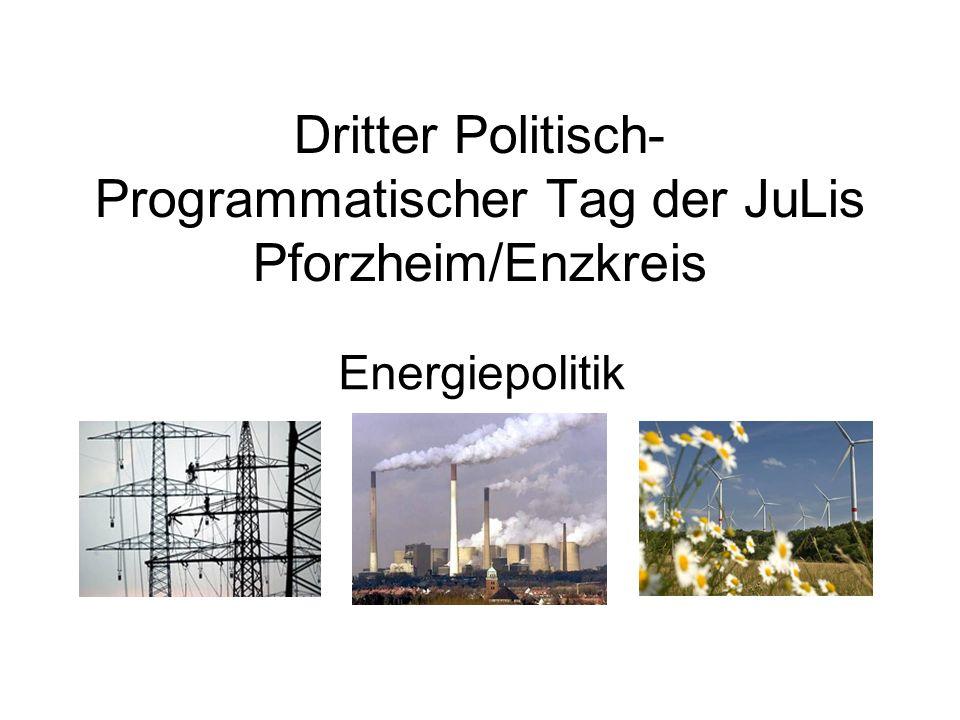 Dritter Politisch- Programmatischer Tag der JuLis Pforzheim/Enzkreis Energiepolitik
