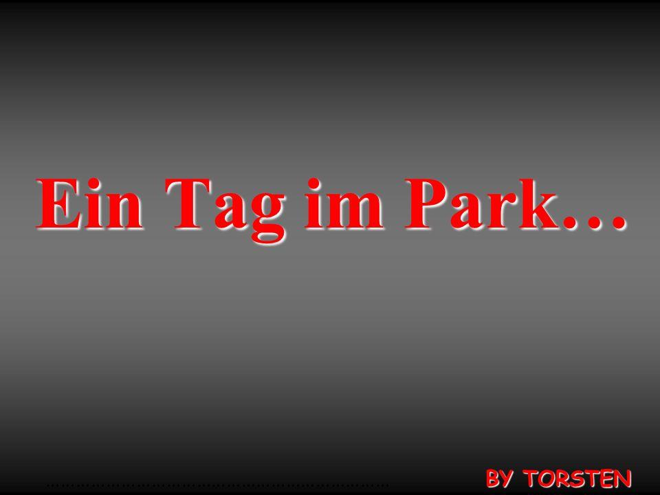 Ein Tag im Park… …………………………………………………………… BY TORSTEN