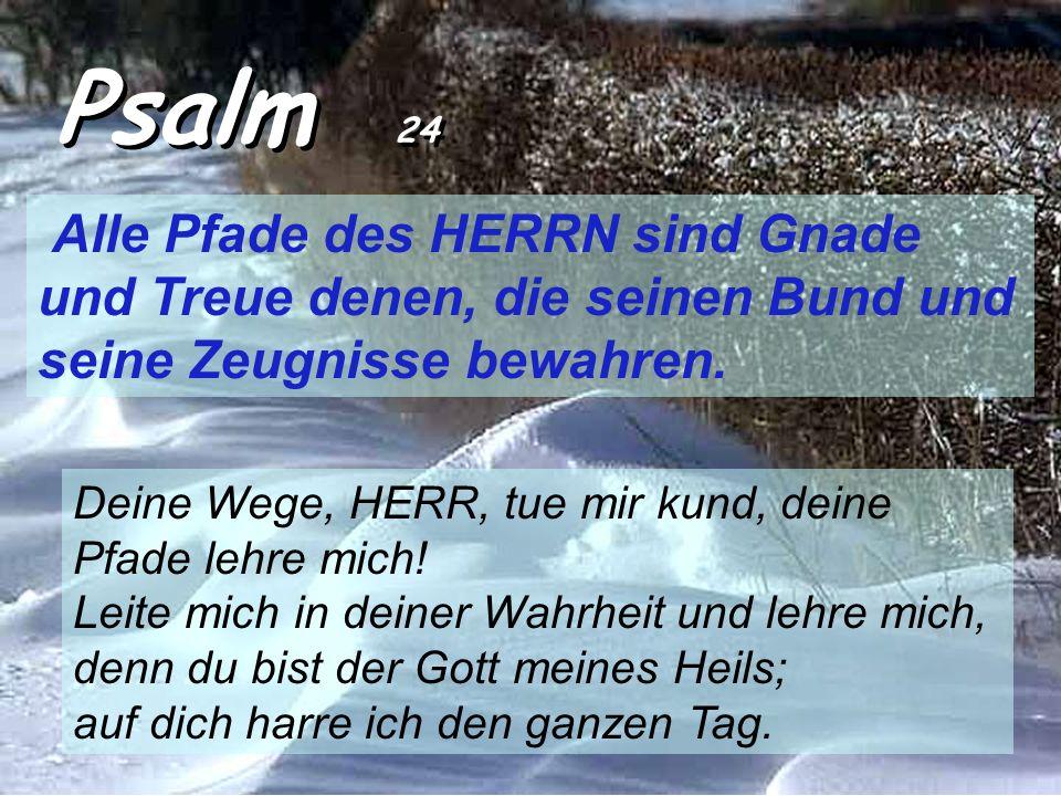 Psalm 24 Alle Pfade des HERRN sind Gnade und Treue denen, die seinen Bund und seine Zeugnisse bewahren.