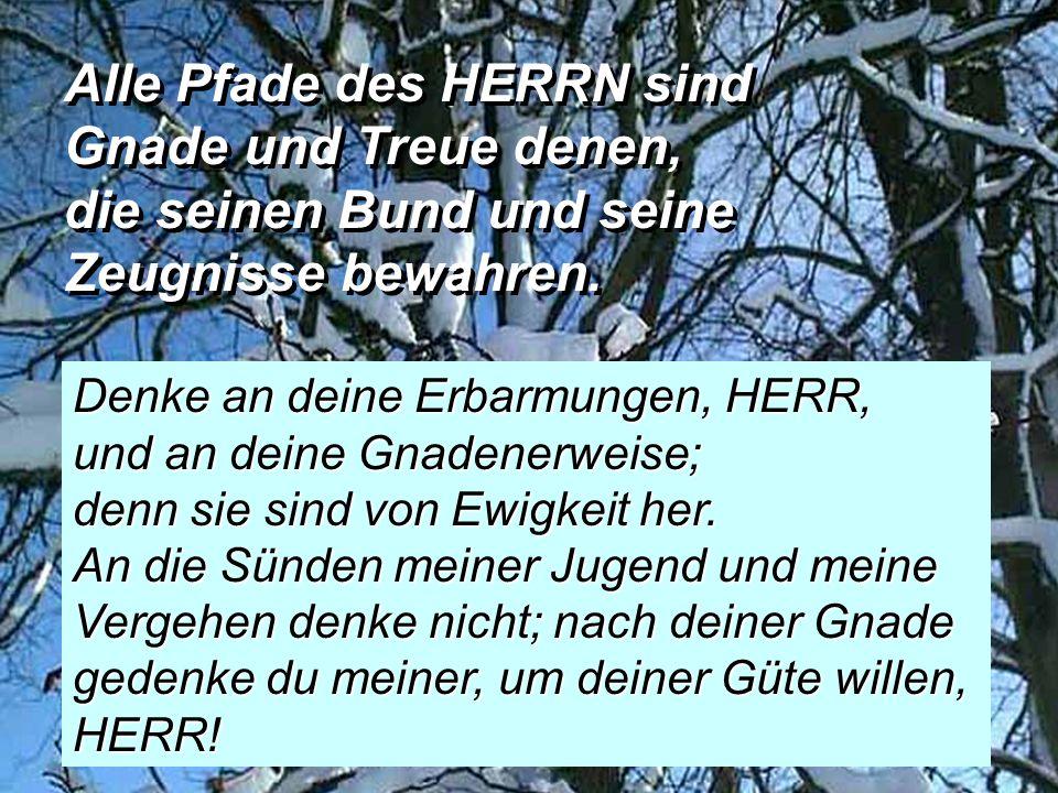 Alle Pfade des HERRN sind Gnade und Treue denen, die seinen Bund und seine Zeugnisse bewahren.