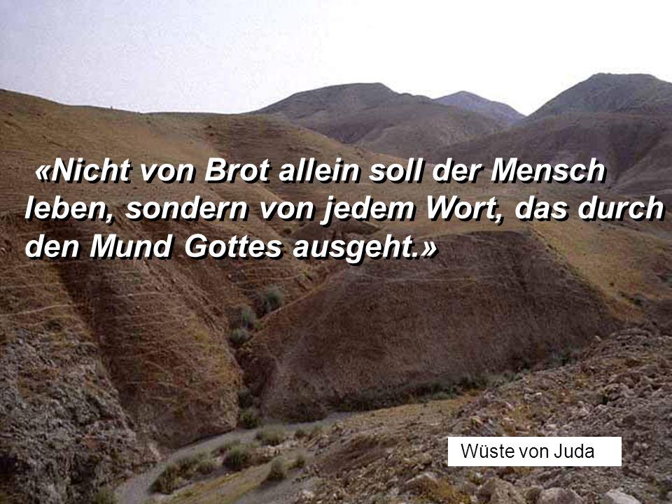 Wüste von Juda «Nicht von Brot allein soll der Mensch leben, sondern von jedem Wort, das durch den Mund Gottes ausgeht.» «Nicht von Brot allein soll der Mensch leben, sondern von jedem Wort, das durch den Mund Gottes ausgeht.»