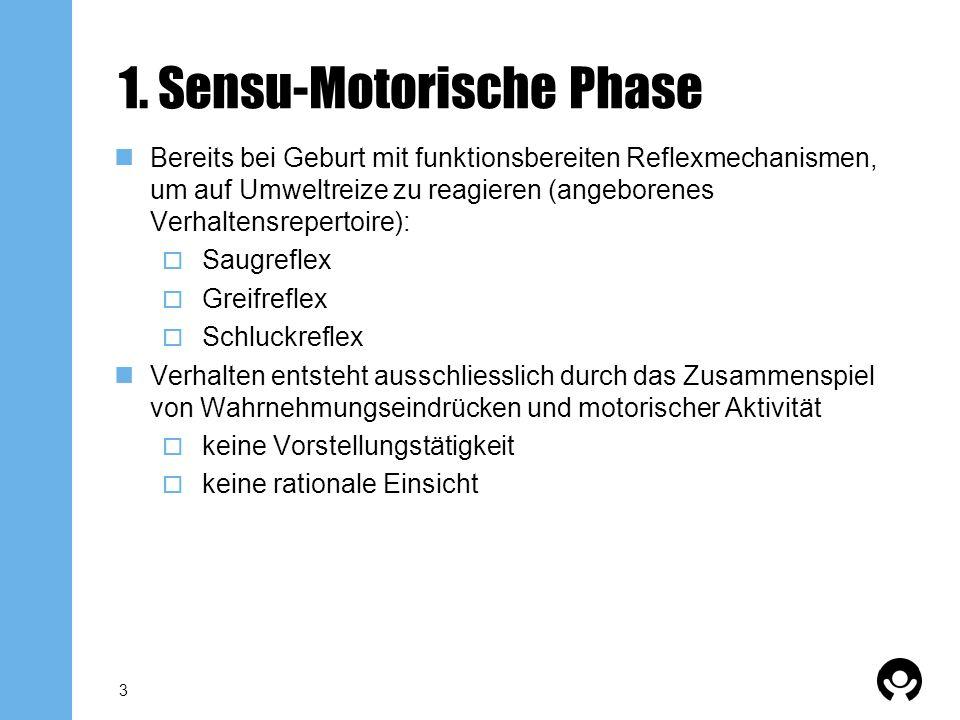 3 1. Sensu-Motorische Phase Bereits bei Geburt mit funktionsbereiten Reflexmechanismen, um auf Umweltreize zu reagieren (angeborenes Verhaltensreperto