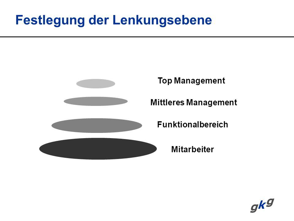Festlegung der Lenkungsebene Mitarbeiter Funktionalbereich Mittleres Management Top Management
