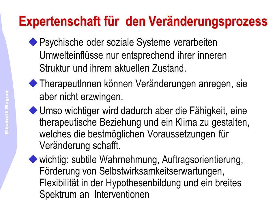 Expertenschaft für den Veränderungsprozess Psychische oder soziale Systeme verarbeiten Umwelteinflüsse nur entsprechend ihrer inneren Struktur und ihr