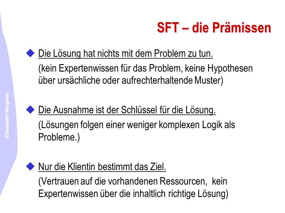 Elisabeth Wagner SFT – die Prämissen Die Lösung hat nichts mit dem Problem zu tun. (kein Expertenwissen für das Problem, keine Hypothesen über ursächl