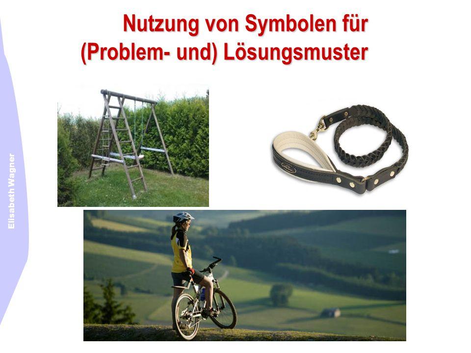 Elisabeth Wagner Nutzung von Symbolen für (Problem- und) Lösungsmuster
