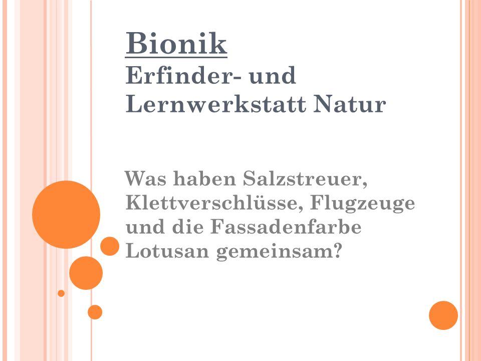 Bionik Erfinder- und Lernwerkstatt Natur Was haben Salzstreuer, Klettverschlüsse, Flugzeuge und die Fassadenfarbe Lotusan gemeinsam?