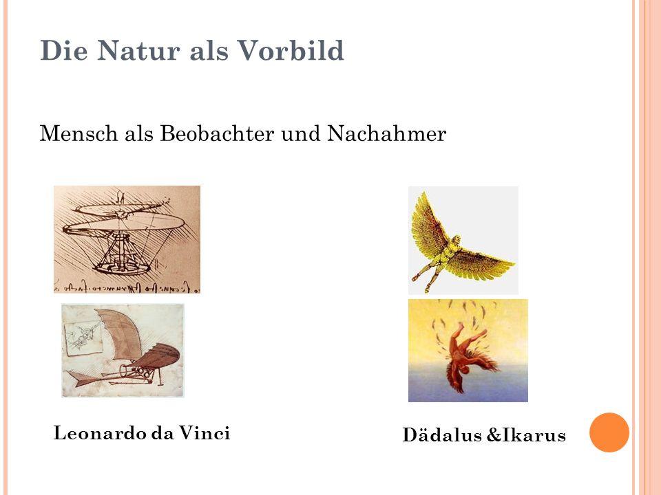 Die Natur als Vorbild Mensch als Beobachter und Nachahmer Leonardo da Vinci Dädalus &Ikarus