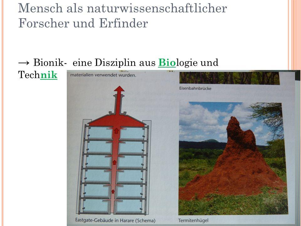 Bionik als Wahlpflichtfach in der 8.und 9.