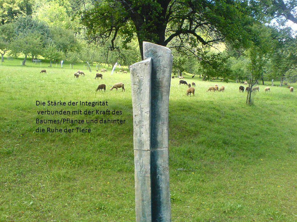 Die Stärke der Integrität verbunden mit der Kraft des Baumes/Pflanze und dahinter die Ruhe der Tiere