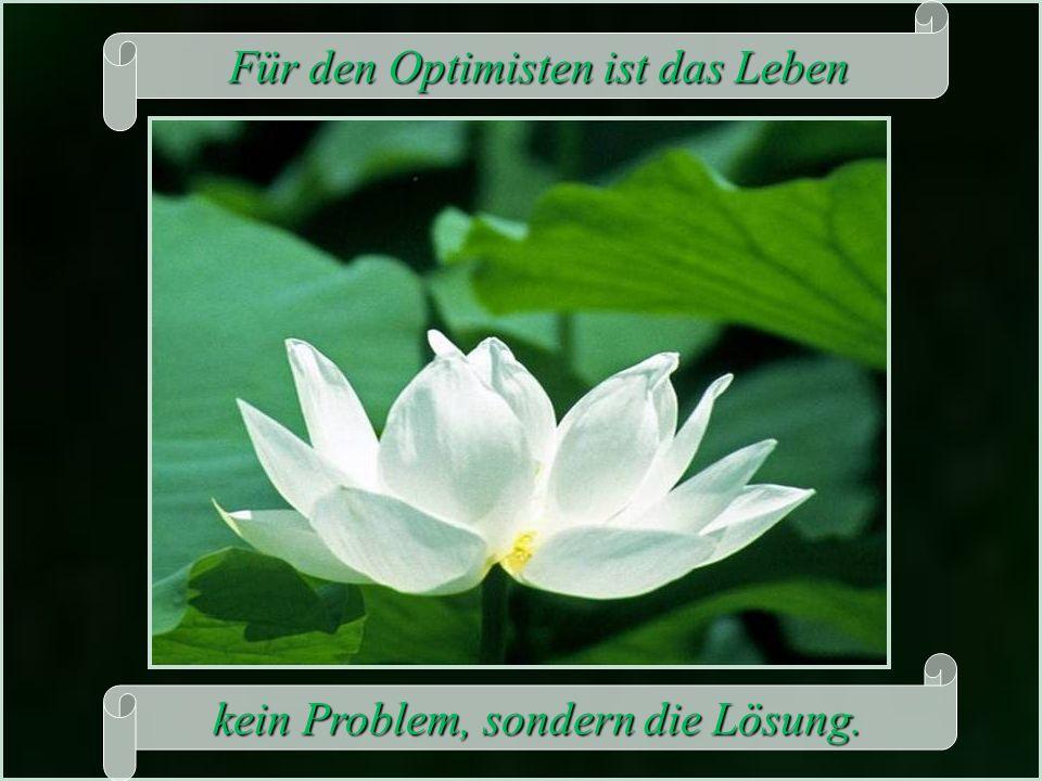 Für den Optimisten ist das Leben Für den Optimisten ist das Leben kein Problem, sondern die Lösung.