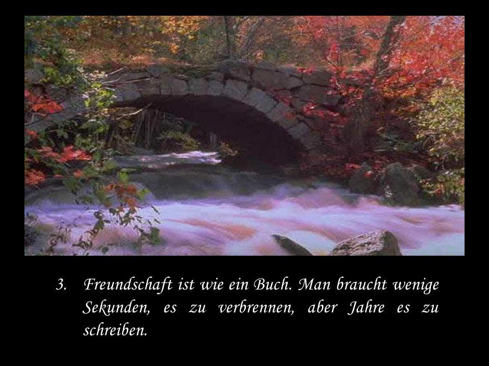 3.Freundschaft ist wie ein Buch.