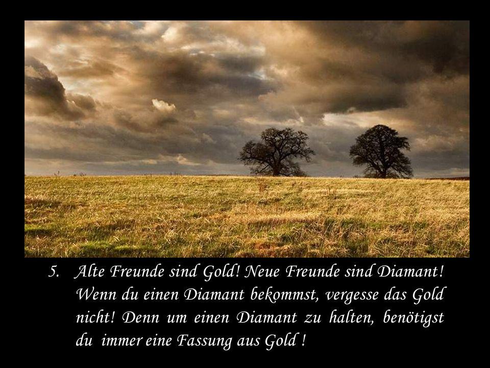 5.Alte Freunde sind Gold.Neue Freunde sind Diamant.