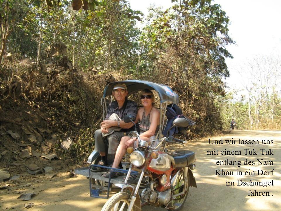 Und wir lassen uns mit einem Tuk-Tuk entlang des Nam Khan in ein Dorf im Dschungel fahren.