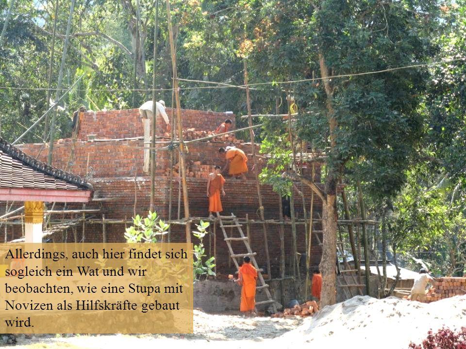 Allerdings, auch hier findet sich sogleich ein Wat und wir beobachten, wie eine Stupa mit Novizen als Hilfskräfte gebaut wird.