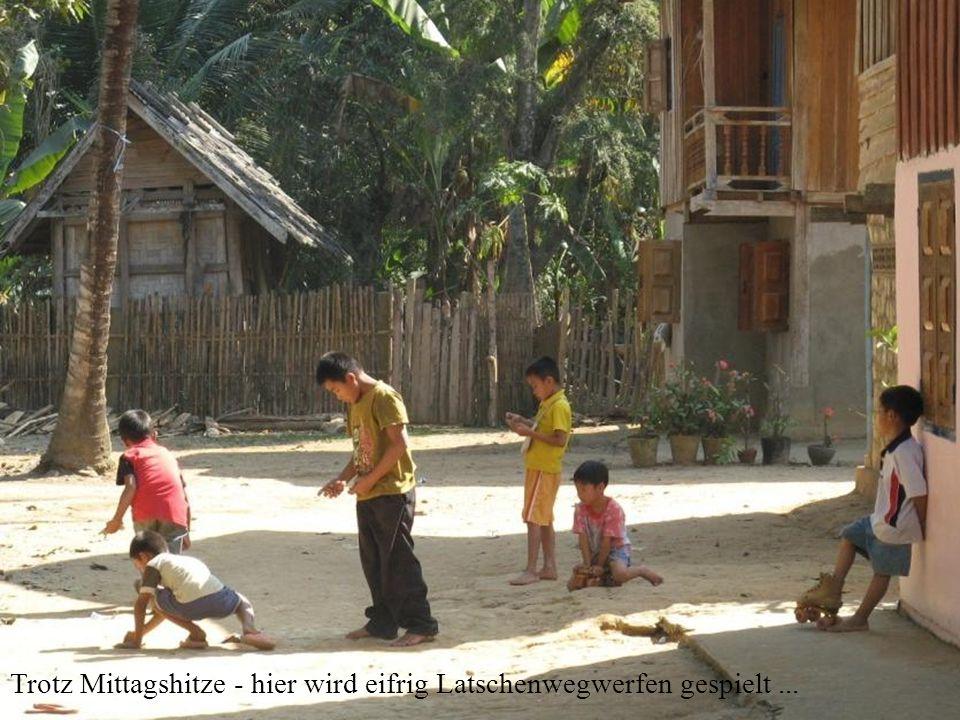 Gliederung eines dörflichen Wats (Sicht vom Osten): Gemeindehaus, Schule Tempel Mönch-, Novizenunterkünfte Stupa Trommel Boot (westlich vom Tempel, hier verdeckt) Wie sehr die Landbevölkerung mit dem Buddhismus verbunden ist, lässt sich daraus ersehen, dass mehr als 2.000 Wats in den Dörfern von Laos zu finden sind.