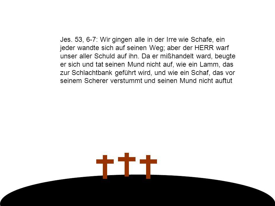 Jes. 53, 6-7: Wir gingen alle in der Irre wie Schafe, ein jeder wandte sich auf seinen Weg; aber der HERR warf unser aller Schuld auf ihn. Da er mißha