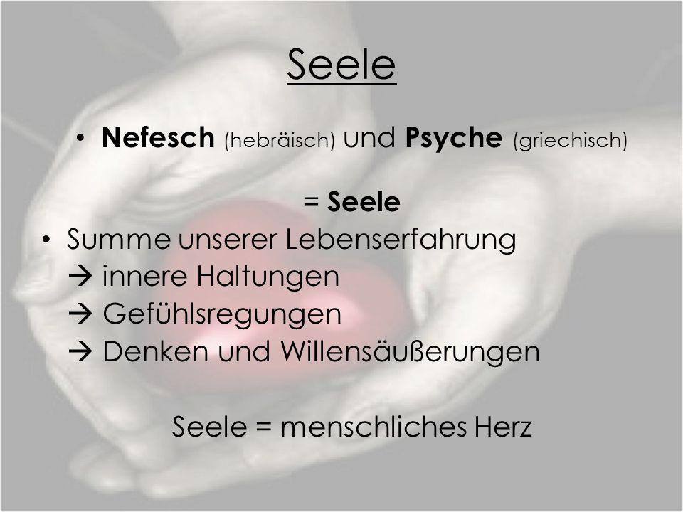 Seele Nefesch (hebräisch) und Psyche (griechisch) = Seele Summe unserer Lebenserfahrung innere Haltungen Gefühlsregungen Denken und Willensäußerungen