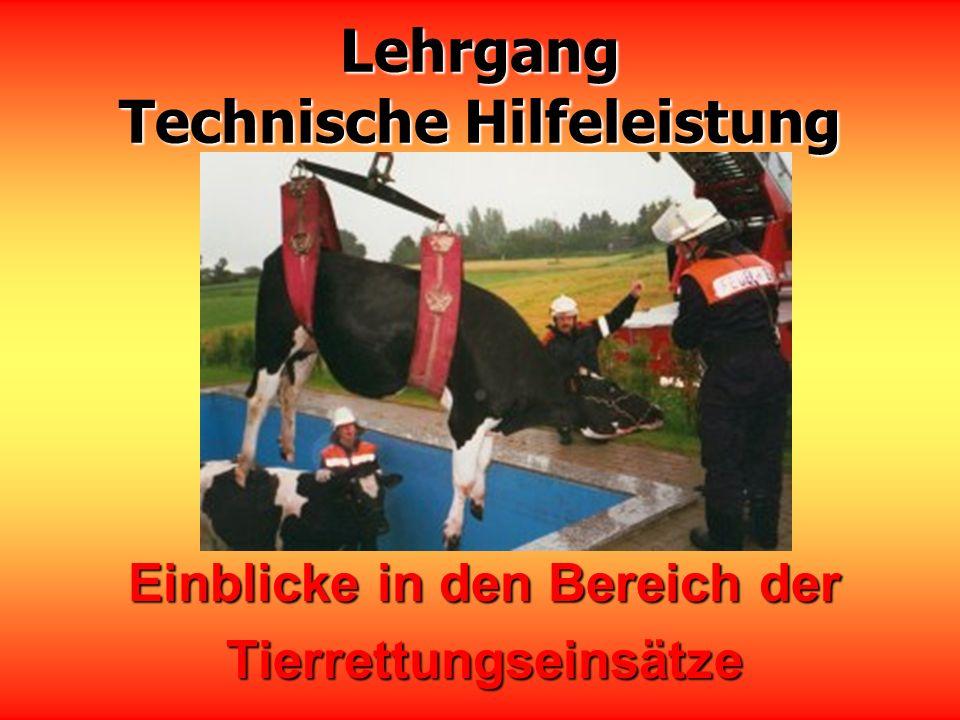Lehrgang Technische Hilfeleistung Einblicke in den Bereich der Tierrettungseinsätze