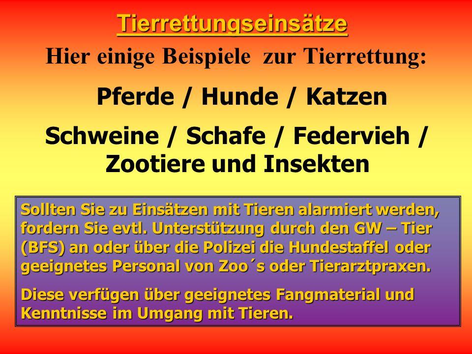 Tierrettungseinsätze Hier einige Beispiele zur Tierrettung: Pferde / Hunde / Katzen Schweine / Schafe / Federvieh / Zootiere und Insekten Sollten Sie