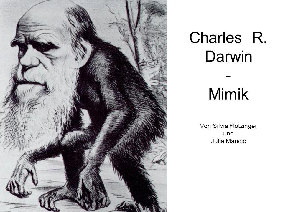 Angewandte Mimikforschung II