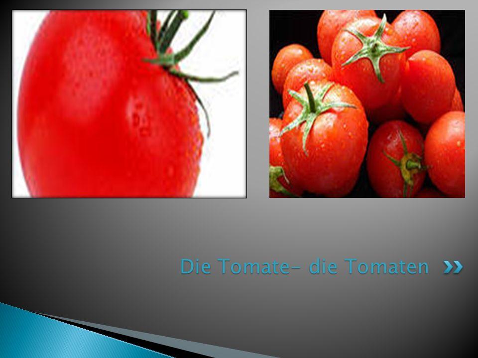 Die Tomate- die Tomaten