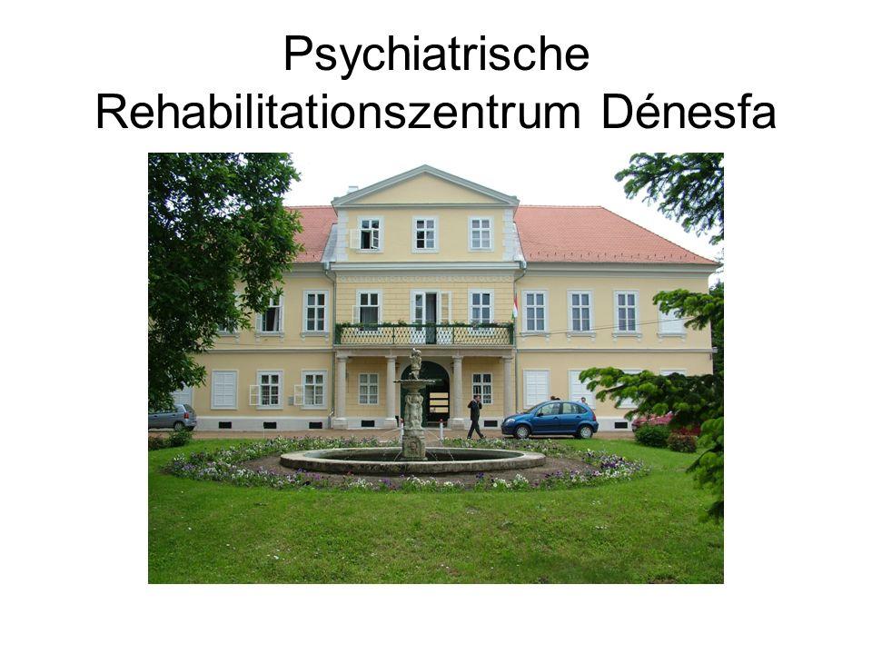 Psychiatrische Rehabilitationszentrum Dénesfa