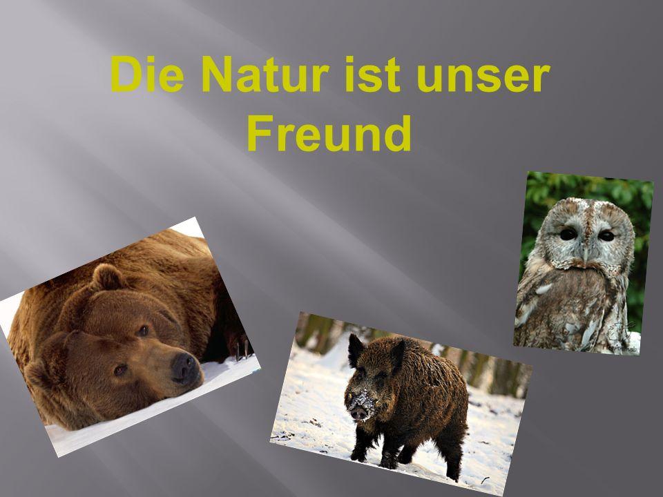 Die Natur ist unser Freund