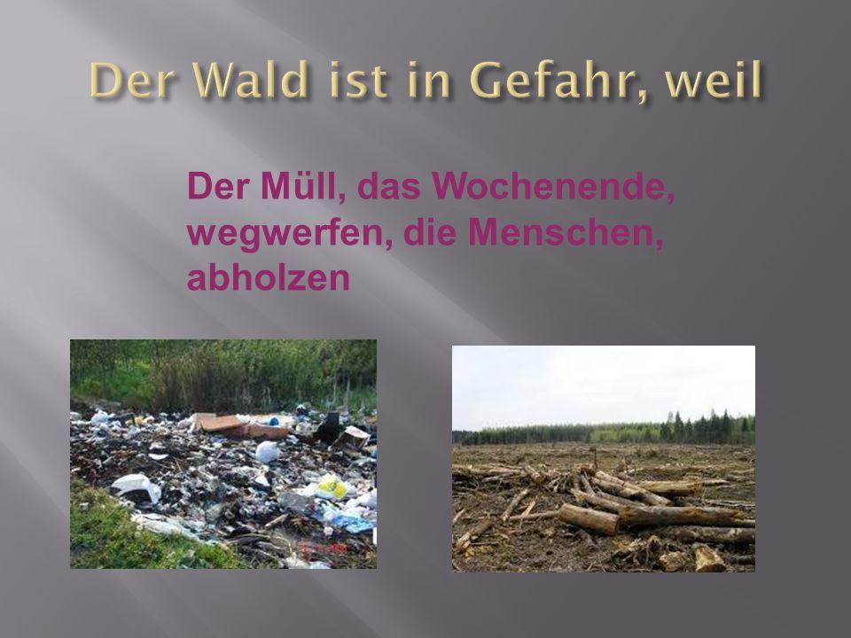 Der Müll, das Wochenende, wegwerfen, die Menschen, abholzen